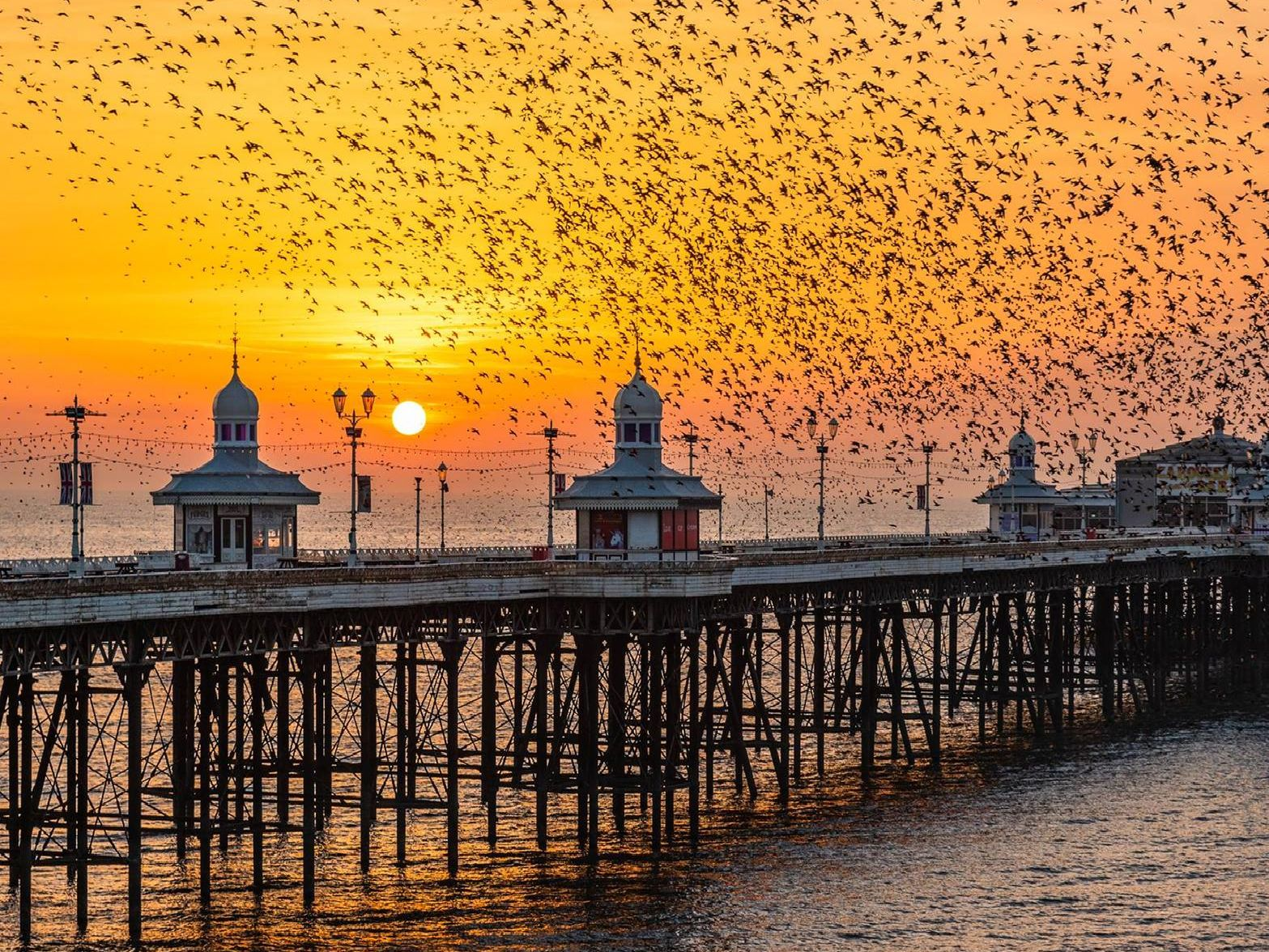 Your pictures that captured Blackpool at its most beautiful
