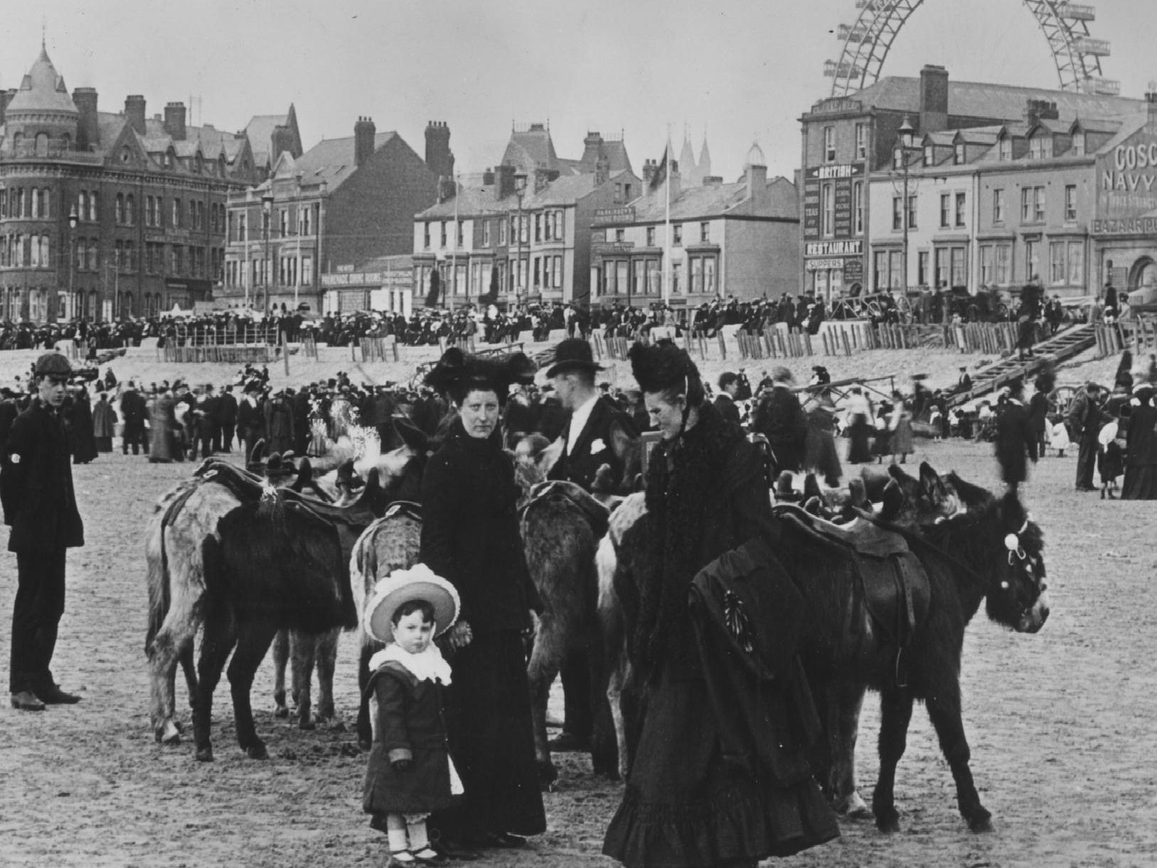 A family preparing to take a donkey ride on Blackpool beach, 1903. (Pic: Rischgitz/Getty Images)
