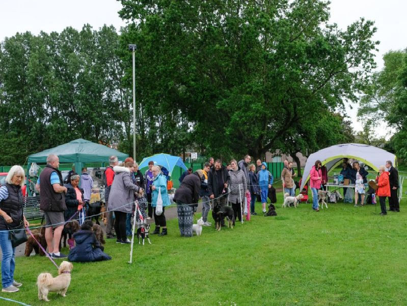 The event was organised by Friends of Kingscote Park and Layton Community House.