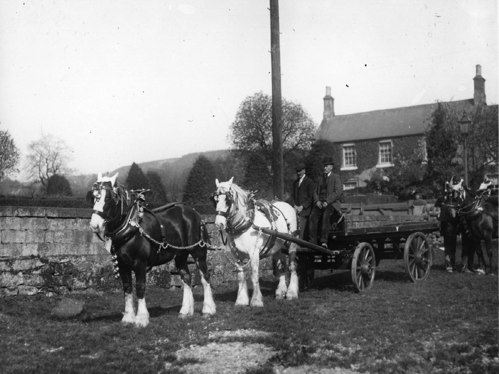 This horse and cart were part of the May Day parade in Matlock Bath in 1907.