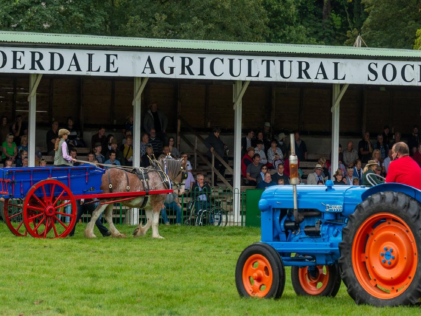 The annual Nidderdale Show took place today - here are 20 pictures.