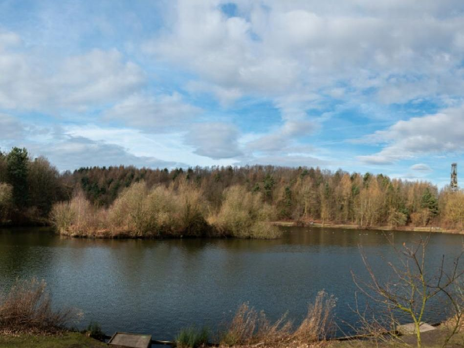 """The park has three marked out trails and has been given a 4.5 out of five by visitors. One review said: """"Love this place whether it's a family outing with my children, there's a park, ducks to feed, nice cafe that's reasonable priced."""""""