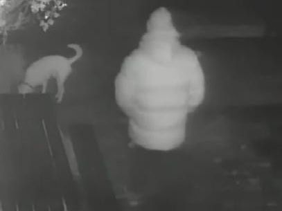 Police investigating a report of sexual assault in Lancaster have released an image of a dog walker who is being treated as a potential witness.