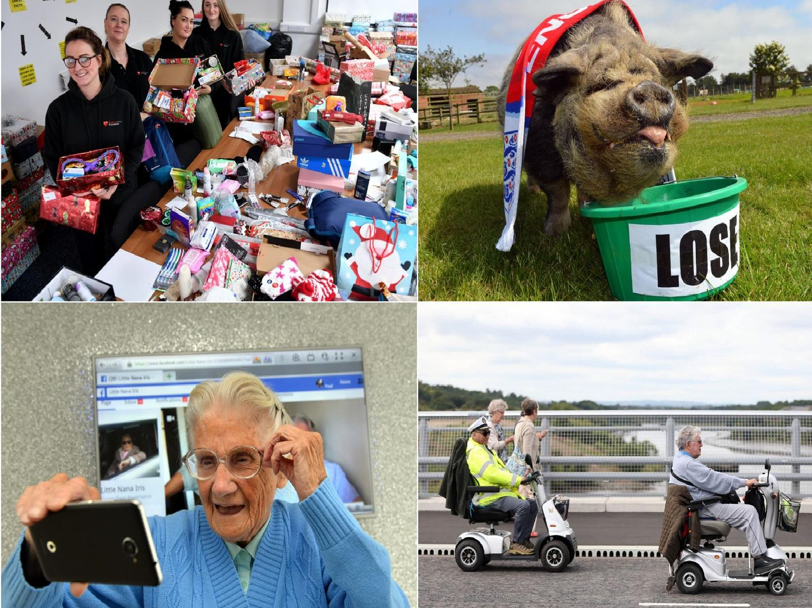 Here are some of our highlights of the year which raised a smile.