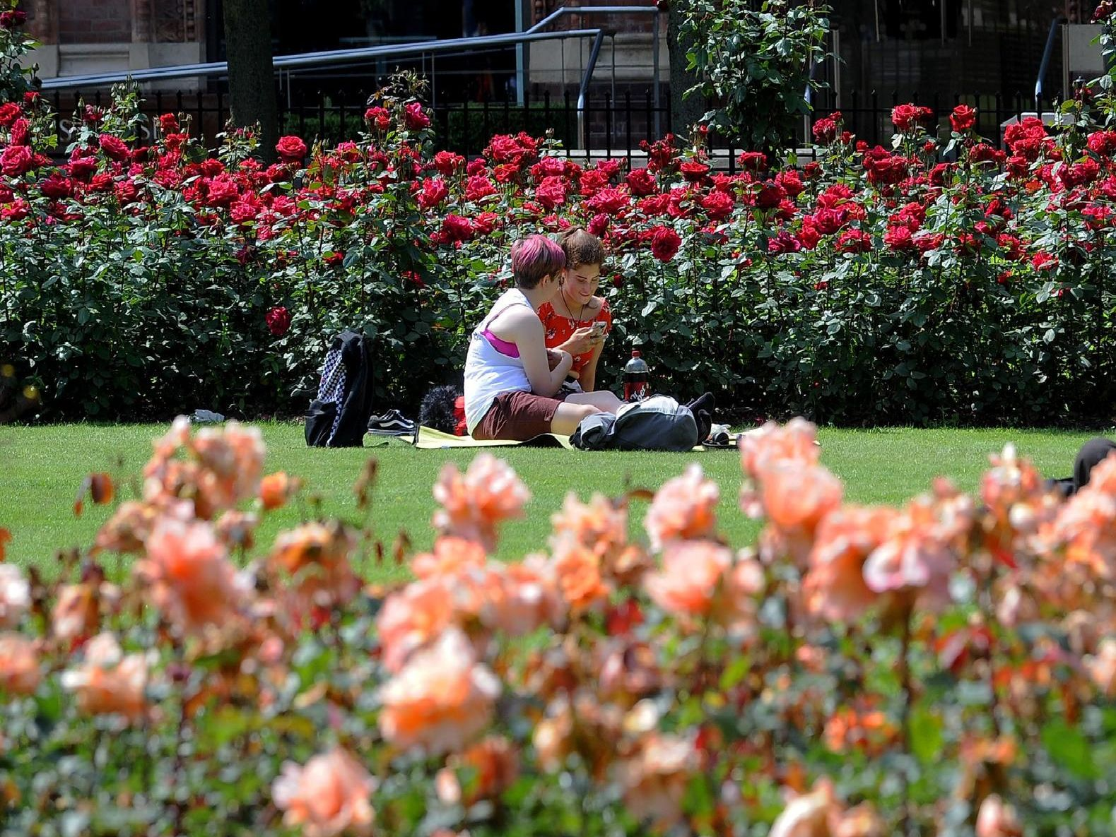 Sunbathers in Park Square, Leeds. Picture by Simon Hulme.