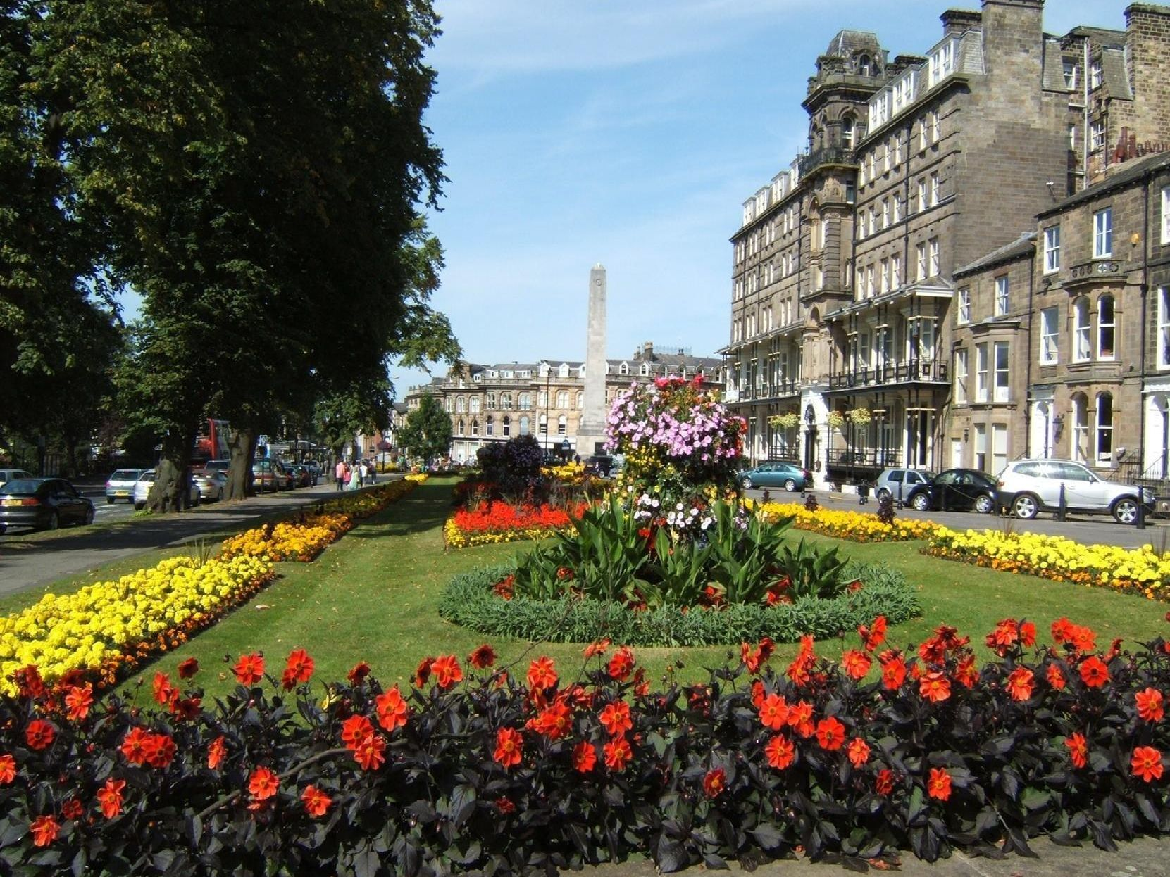If you're going vegan, Harrogate is just the ticket.'Credit: Other