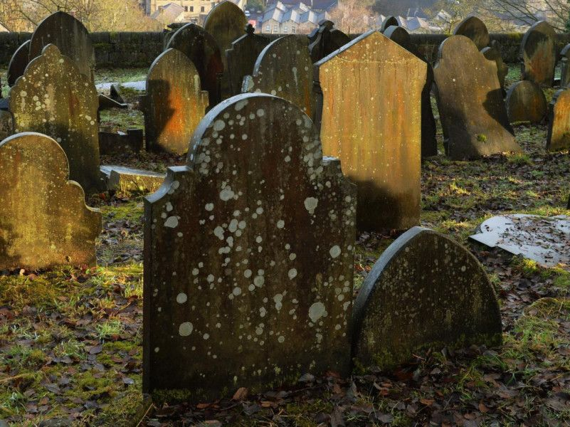 Teen hallucinating on magic mushrooms sexually assaulted woman in Yorkshire graveyard thumbnail