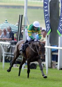 Champion jockey AP McCoy is the real deal for Wakefield Hospice