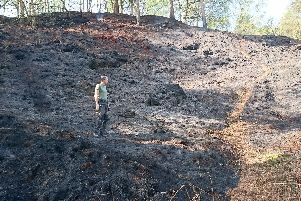 Firefighters tackled a huge fire at Beggarswell Wood in Ambergate.