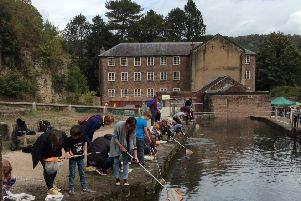 Pond dipping at Cromford Mills.