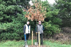 A tree planting scheme in Wyre will help tackle climate change