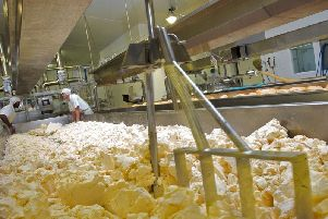 Cheese making at Dewlay