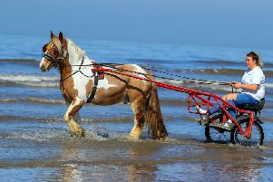 Hercules the Blackpool horse cools down in the sea, on what is expected to be the hottest day of the year so far.'Photo; PA