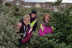Trinity Hospice's Janet Atkins, left, and volunteers Phil Sumner and Lisa Lancaster with collected Christmas trees
