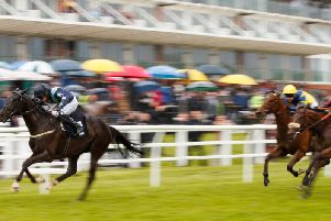 Lingfield stages an all-action meeting tomorrow