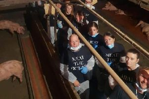 Protesters from Meat The Victims at Moss Rose Piggeries