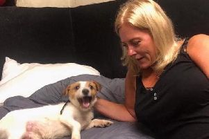 Cathy Midgley with Jack, the Jack Russell cross at Briarcliffe Kennels