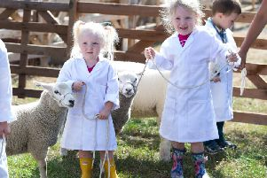 Baa-rilliant fun set for Halifax Agricultural Show