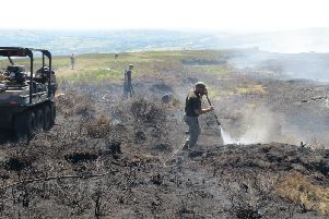 Peak District gamekeepers are reporting catastrophic species loss as a result of the fire on Saddleworth Moor near Oldham.