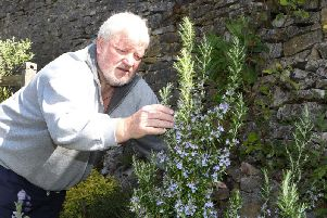 Brian Dunks of the Tideswell Kitchen Garden, who were on hand with multitude of edible plants and gardening advice.