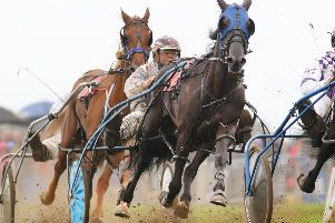 Jason Podmore driving Blythe View Jake in heat two