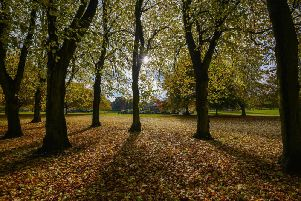 Met Office gives mixed forecast for East Midlands