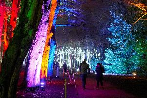 Christmas At Belton will light up the gardens at Belton House from November 29 to December 30