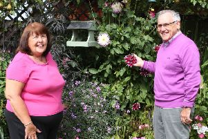 June and Tony Harvey in their award-winning garden.