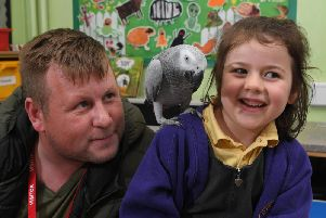 Dave Vaughan with Pee the African Grey parrot who went missing and was found by Adlington St Paul's CE Primary School pupil Esme Potter and rescued by Jessica Fairclough and Justine Peel (Images and video: JPIMedia)
