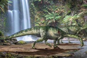 Reconstruction of the bite wound affecting the shoulder of a herbivorous dinosaur which is the focus if new research