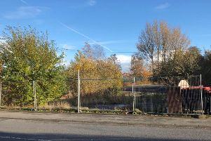 The site of the former McKenzie Arms has been overgrown since it was cleared in 2012