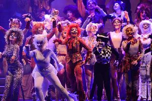 Basics Theatre School cast of Cats on stage captured by photographer Andy Ford.