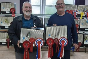 Derek Whaites best in show and Tom Barron, best young bird.