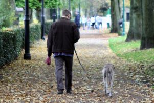 As dog walker I may become a 'criminal', says reader