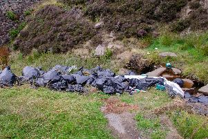 Flytipping at the Nether North Grain sign layby on the Snake Pass.