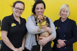 MP Paula Sherriff will team up with a Dogs Trust resident in the Westminster competition