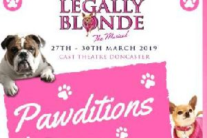 Legally Blonde dog auditions poster.