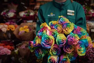Morrisons florists are celebrating all types of lovers by launching one of the UKs most colourful flowers  the Rainbow Rose