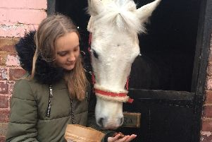 Alyssia giving her pony a Dinki Horse Donut.