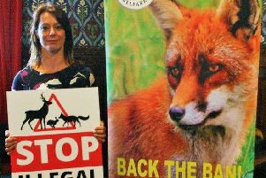 Gloria De Piero says custodial sentences could be used to deter illegal hunting