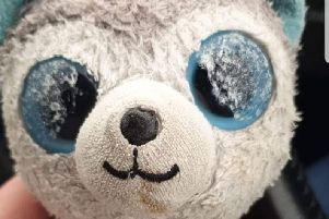 Have you seen 'Doggy'? The soft toy was last seen in Macbeth Road, Fleetwood, last week. Pic: Lancashire Police
