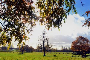 Sky clears as weather warning stepped down in East Midlands