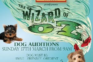 Auditions for dogs take place this weekend