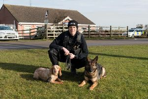 Lincolnshire Police are welcoming eight new four-legged recruits