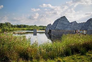 Brockholes Nature Reserve, Preston