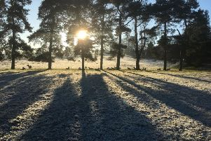 Highs of 19C were expected in parts of Britain.