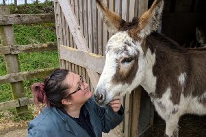 Picture by The Donkey Sanctuary