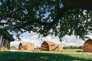 The line of cabins at Wigwam Holidays Saxon Meadow. Image: Wigwam Holidays