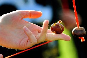 Ten fascinating facts you may not know about conkers