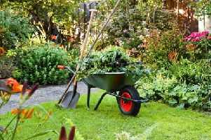 Gardening can be good for you